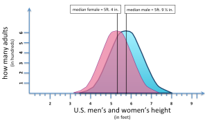 bell curve usmenandwomenheight