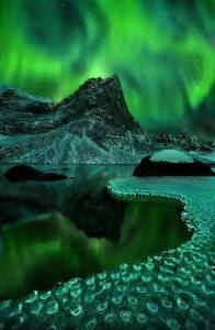 aurora borealis over the winterland